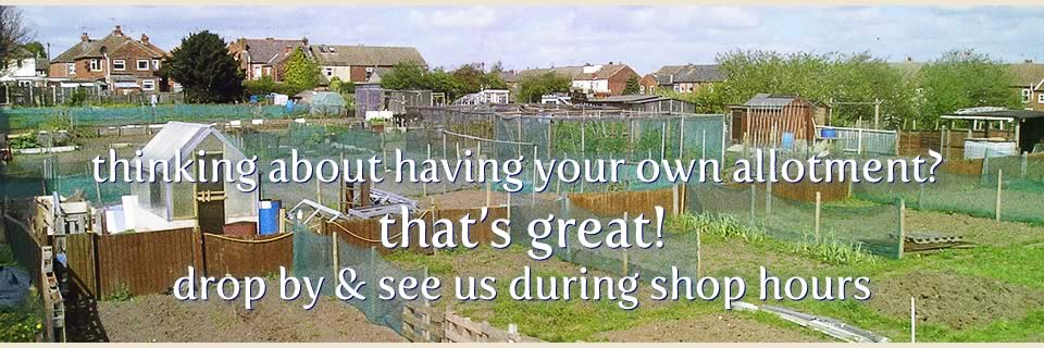 Thinking about having your own allotment? That's great! Drop by and see us during shop hours